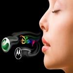 illatmarketing tanácsadás